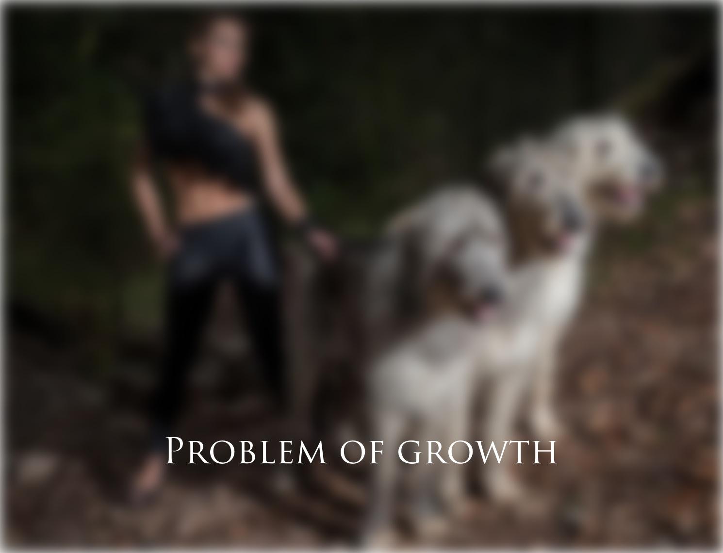Проблема роста