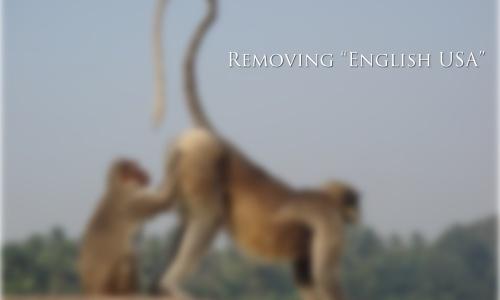 removing english usa