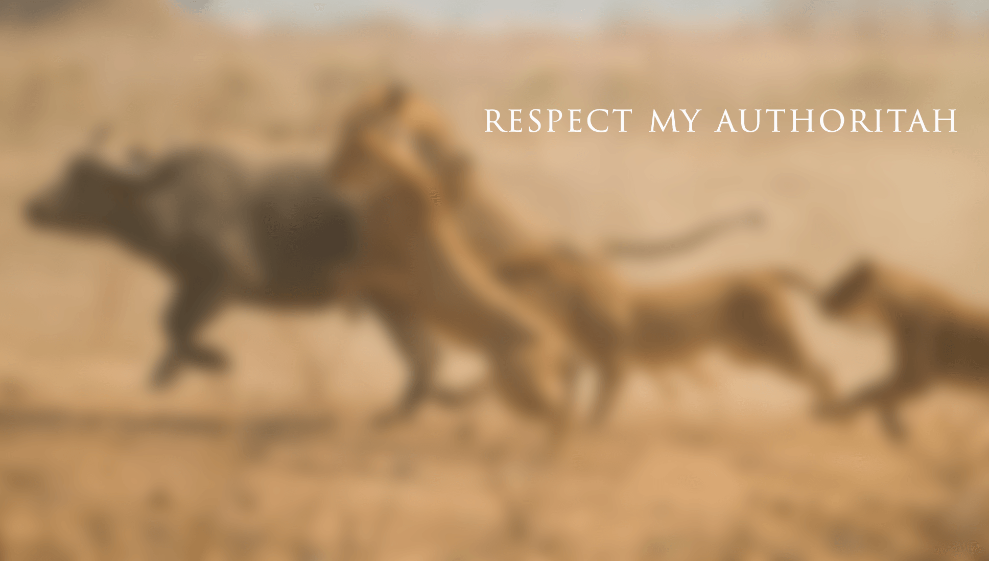 respect my authoritah